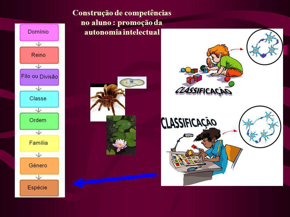 Construção de competências no aluno : promoção da autonomia intelectual