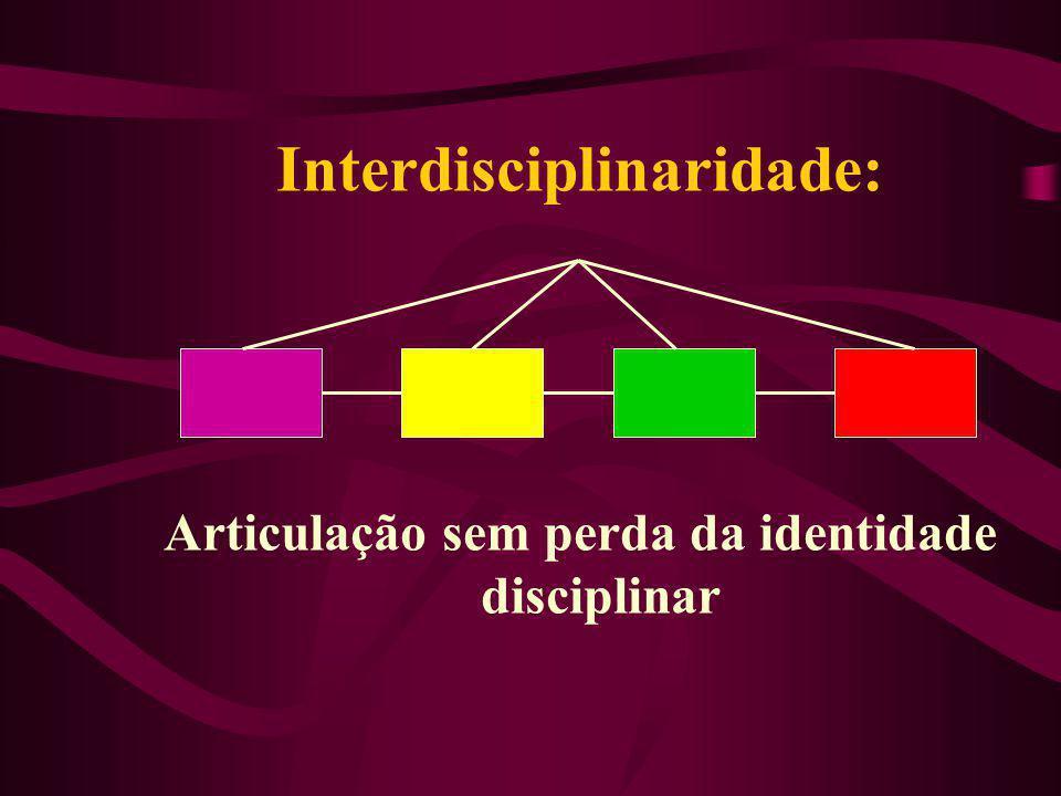 Interdisciplinaridade: Articulação sem perda da identidade disciplinar