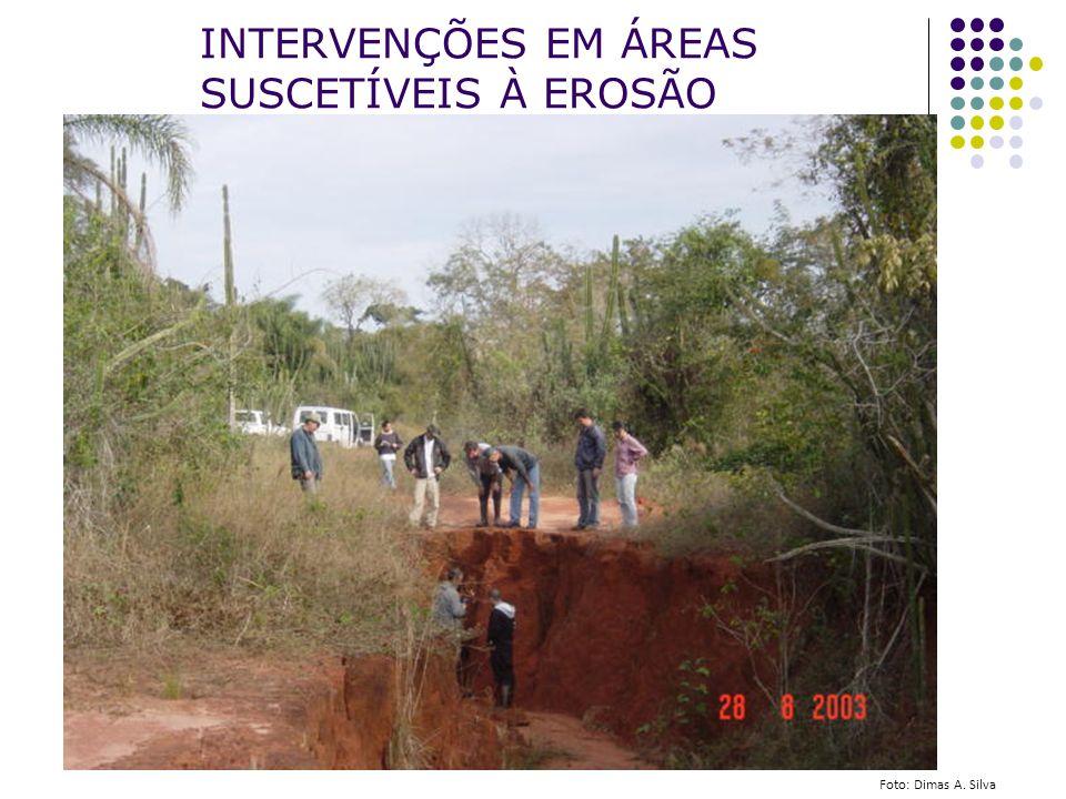 INTERVENÇÕES EM ÁREAS SUSCETÍVEIS À EROSÃO Foto: Dimas A. Silva