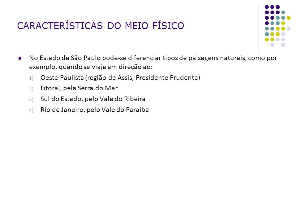 CARACTERÍSTICAS DO MEIO FÍSICO No Estado de São Paulo pode-se diferenciar tipos de paisagens naturais, como por exemplo, quando se viaja em direção ao: 1) Oeste Paulista (região de Assis, Presidente Prudente) 2) Litoral, pela Serra do Mar 3) Sul do Estado, pelo Vale do Ribeira 4) Rio de Janeiro, pelo Vale do Paraíba