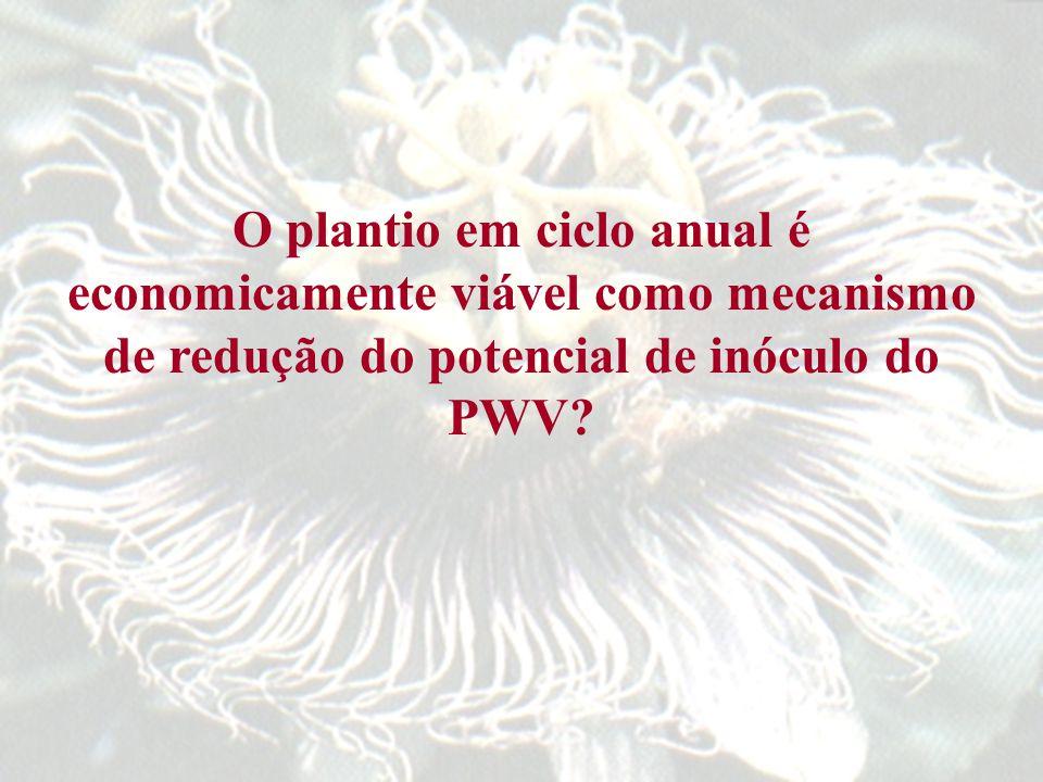 O plantio em ciclo anual é economicamente viável como mecanismo de redução do potencial de inóculo do PWV?