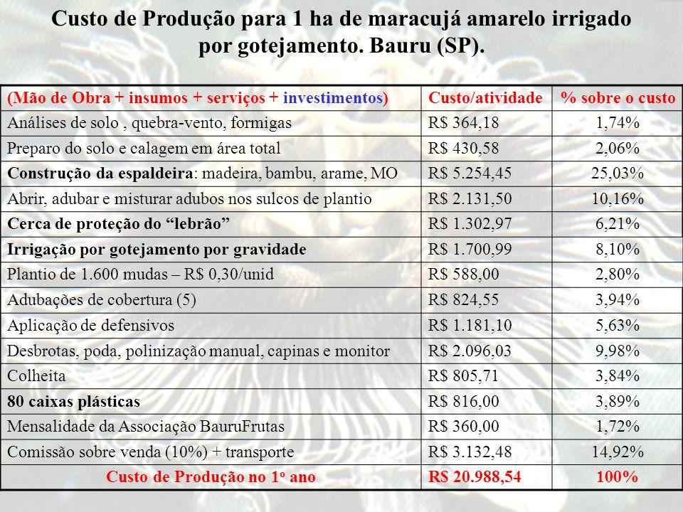 Custo de Produção para 1 ha de maracujá amarelo irrigado por gotejamento.