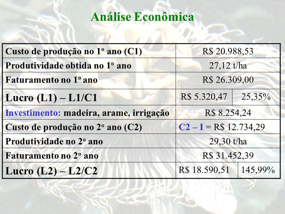 Análise Econômica Custo de produção no 1 o ano (C1)R$ 20.988,53 Produtividade obtida no 1 o ano27,12 t/ha Faturamento no 1 o anoR$ 26.309,00 Lucro (L1) – L1/C1 R$ 5.320,4725,35% Investimento: madeira, arame, irrigaçãoR$ 8.254,24 Custo de produção no 2 o ano (C2)C2 – I = R$ 12.734,29 Produtividade no 2 o ano29,30 t/ha Faturamento no 2 o anoR$ 31.452,39 Lucro (L2) – L2/C2 R$ 18.590,51145,99%