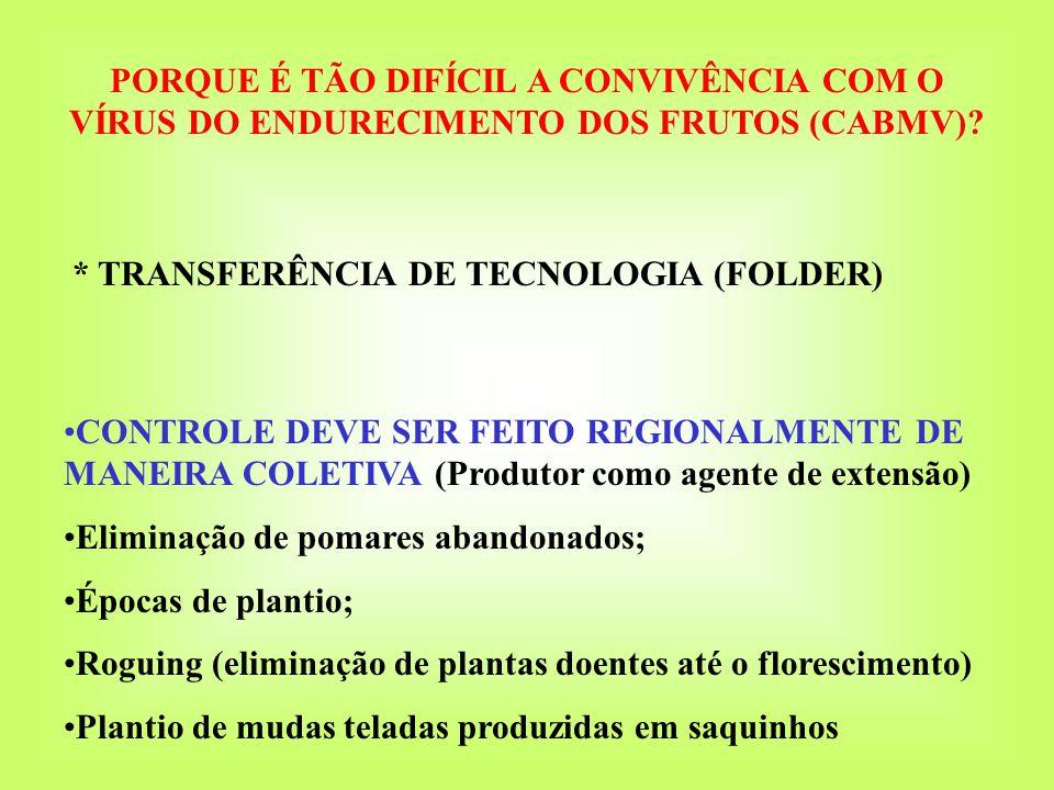 PlantioPeríodo de ColheitaSintomas iniciais de PWV 1 o ano 04/10/0418/03/05 a 11/07/0526/01/05 (113 dias) 2 o ano 20/08/0506/02/06 a 19/07/0604/01/06 (135 dias) Sistema de Colheita e Classificação dos Frutos 5 classes (calibres) 3A (diâmetro maior que 85 mm), 2A (75-85 mm) 1A (65-75 mm) 2 a linha (composto por frutos 1, 2 e 3A, com defeitos leves) indústria (menor que 55 mm ou com defeitos graves)