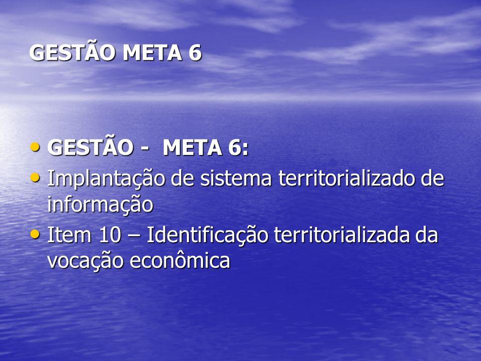 GESTÃO META 6 GESTÃO - META 6: GESTÃO - META 6: Implantação de sistema territorializado de informação Implantação de sistema territorializado de infor