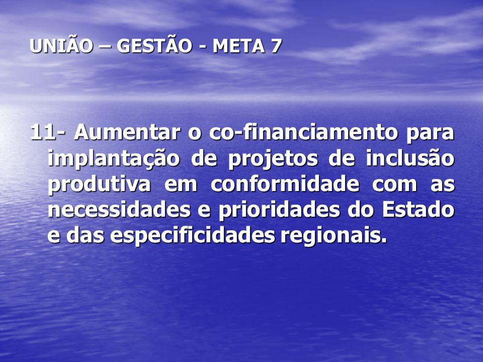 UNIÃO – GESTÃO - META 7 11- Aumentar o co-financiamento para implantação de projetos de inclusão produtiva em conformidade com as necessidades e prior
