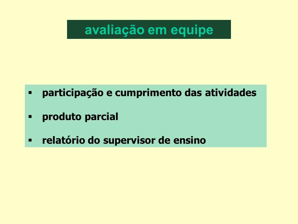 avaliação em equipe participação e cumprimento das atividades produto parcial relatório do supervisor de ensino