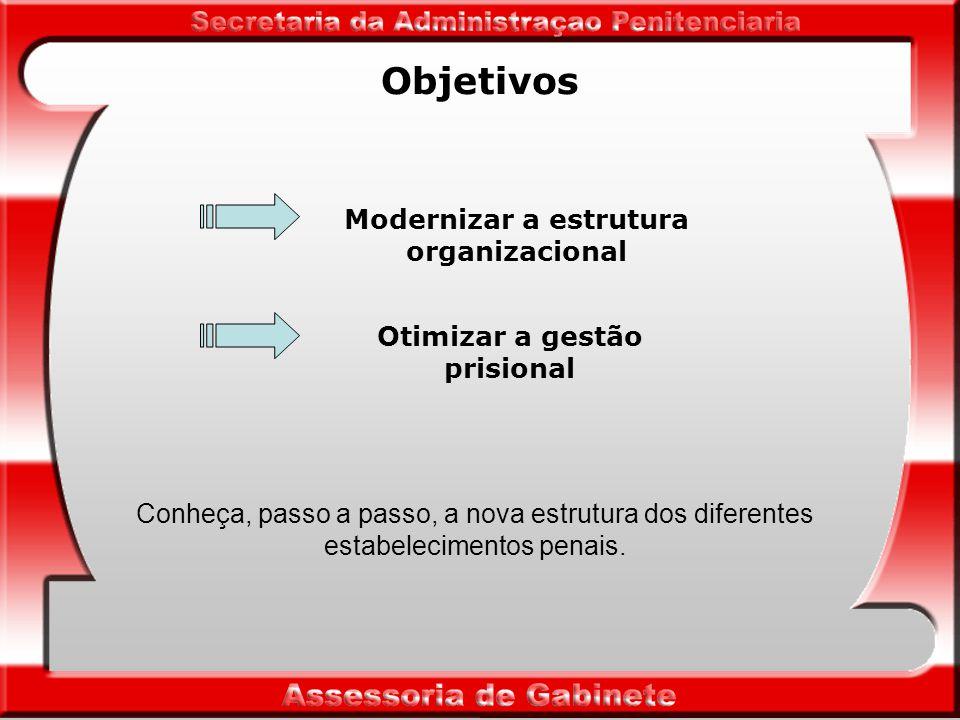 Objetivos Modernizar a estrutura organizacional Otimizar a gestão prisional Conheça, passo a passo, a nova estrutura dos diferentes estabelecimentos penais.