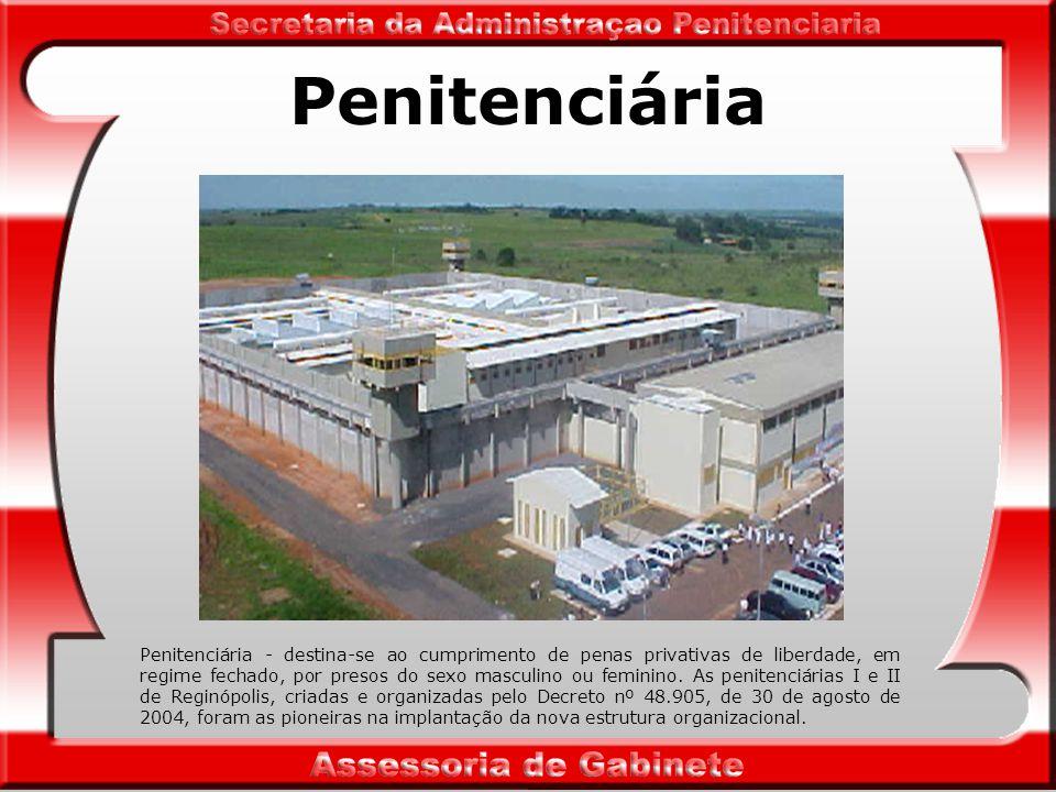 Penitenciária Penitenciária - destina-se ao cumprimento de penas privativas de liberdade, em regime fechado, por presos do sexo masculino ou feminino.