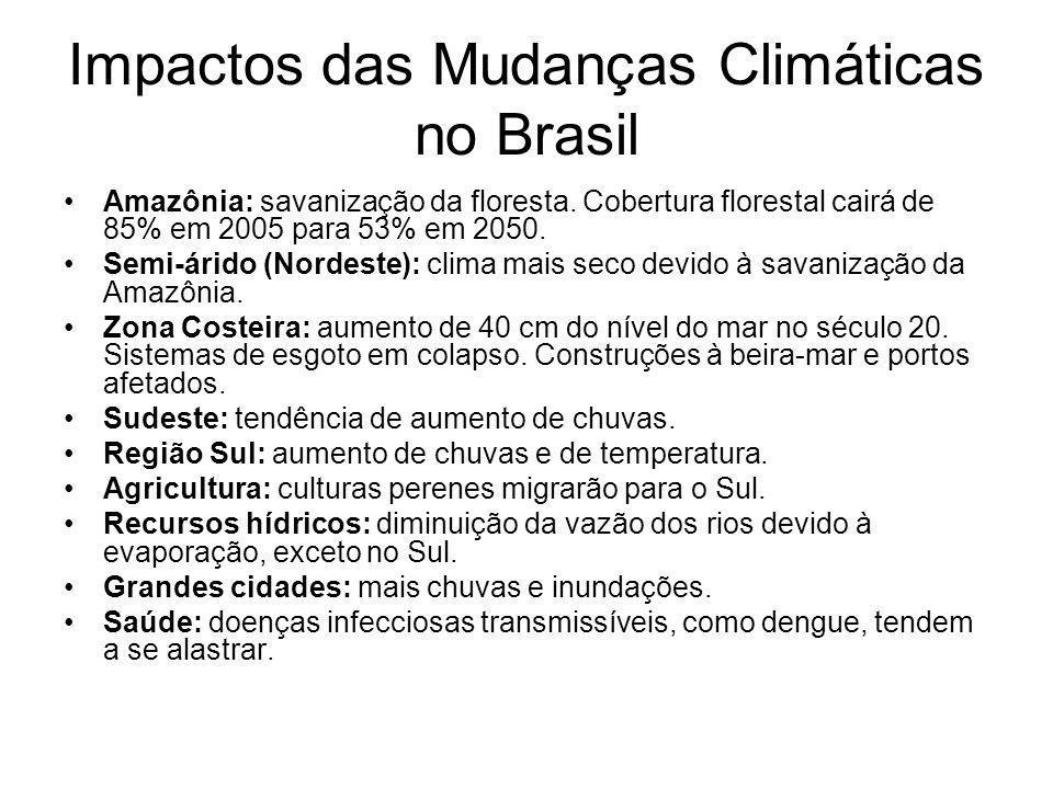 Impactos das Mudanças Climáticas no Brasil Amazônia: savanização da floresta. Cobertura florestal cairá de 85% em 2005 para 53% em 2050. Semi-árido (N