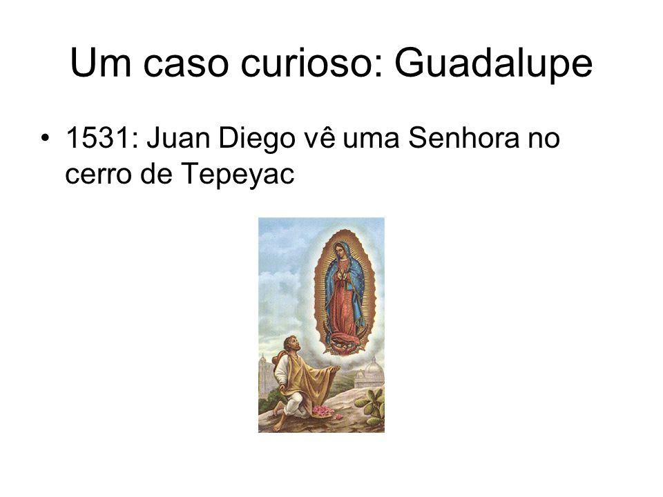 Um caso curioso: Guadalupe 1531: Juan Diego vê uma Senhora no cerro de Tepeyac