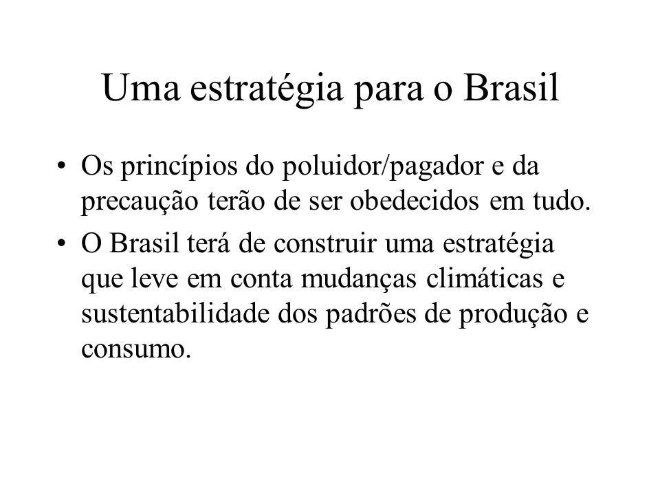 Uma estratégia para o Brasil Os princípios do poluidor/pagador e da precaução terão de ser obedecidos em tudo.