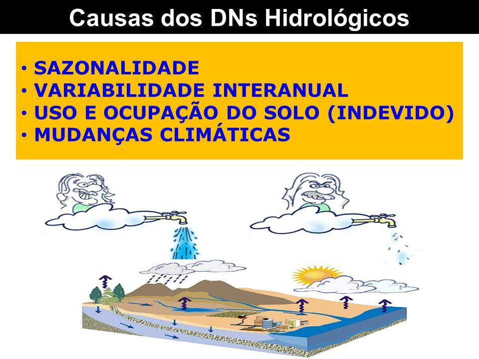 Causas dos DNs Hidrológicos SAZONALIDADE VARIABILIDADE INTERANUAL USO E OCUPAÇÃO DO SOLO (INDEVIDO) MUDANÇAS CLIMÁTICAS
