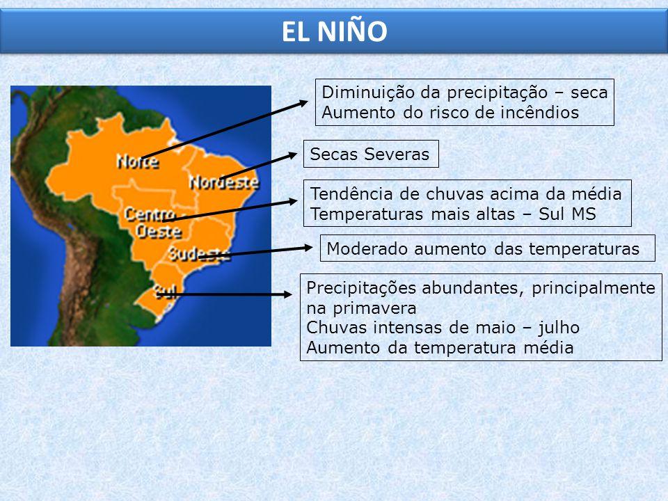 Diminuição da precipitação – seca Aumento do risco de incêndios Secas SeverasTendência de chuvas acima da média Temperaturas mais altas – Sul MS Moder