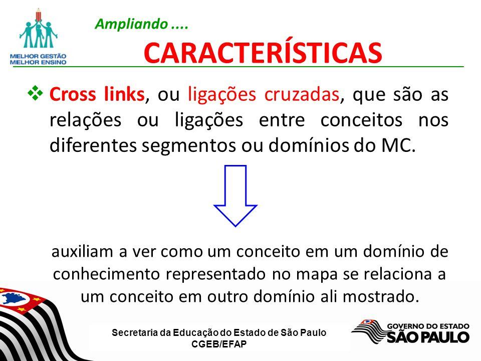 Secretaria da Educação do Estado de São Paulo CGEB/EFAP Cross links, ou ligações cruzadas, que são as relações ou ligações entre conceitos nos diferen