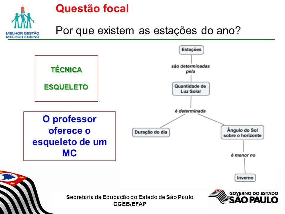 Secretaria da Educação do Estado de São Paulo CGEB/EFAP Questão focal Por que existem as estações do ano?TÉCNICAESQUELETO O professor oferece o esquel