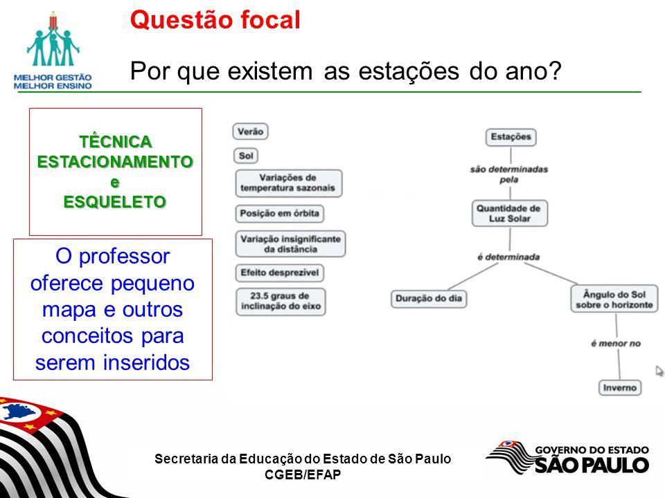 Secretaria da Educação do Estado de São Paulo CGEB/EFAP Questão focal Por que existem as estações do ano?TÉCNICA ESTACIONAMENTO e ESQUELETO O professo