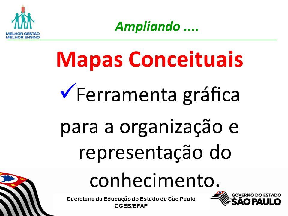 Secretaria da Educação do Estado de São Paulo CGEB/EFAP Ampliando.... Mapas Conceituais Ferramenta gráca para a organização e representação do conheci