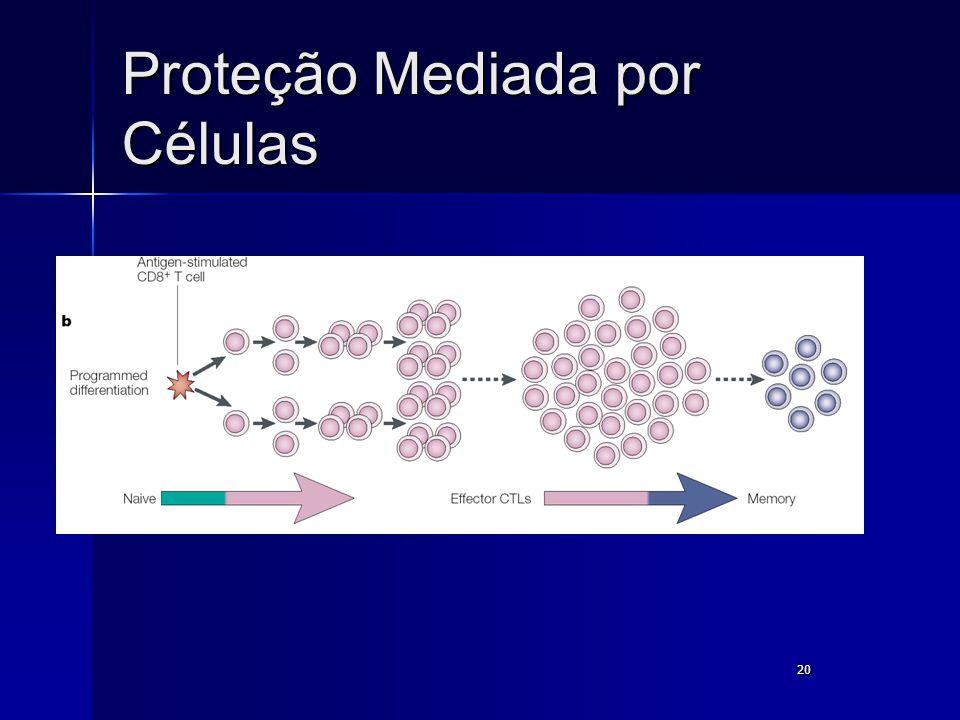 20 Proteção Mediada por Células
