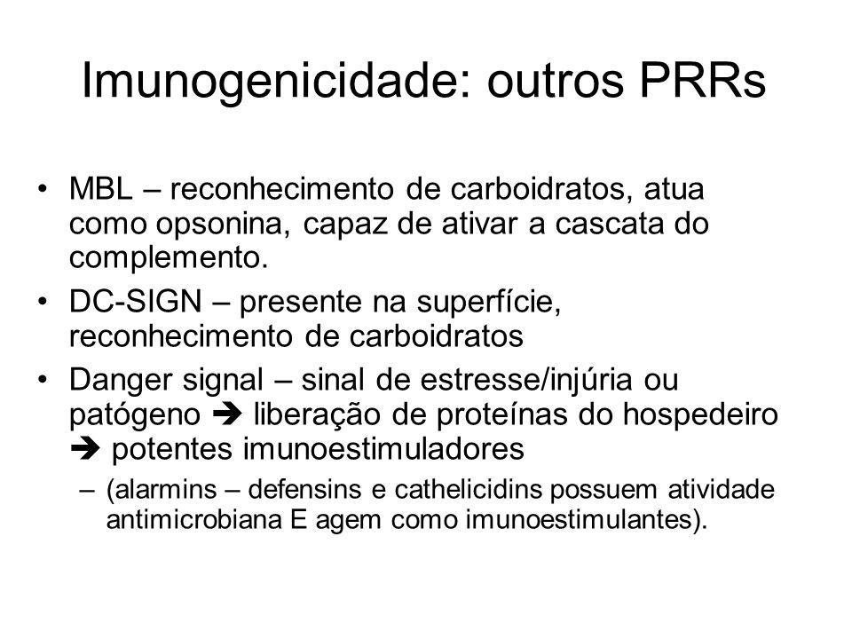 Imunogenicidade: outros PRRs MBL – reconhecimento de carboidratos, atua como opsonina, capaz de ativar a cascata do complemento. DC-SIGN – presente na