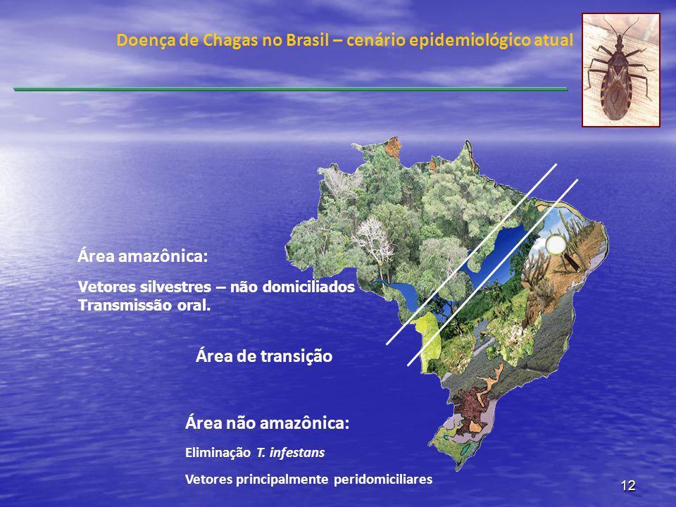 12 Área amazônica: Área de transição Área não amazônica: Eliminação T. infestans Vetores principalmente peridomiciliares Doença de Chagas no Brasil –
