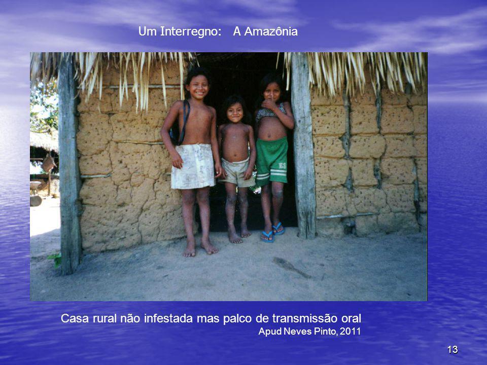 13 Casa rural não infestada mas palco de transmissão oral Apud Neves Pinto, 2011 Um Interregno: A Amazônia
