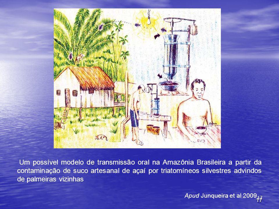 17 Apud Junqueira et al 2009 Um possível modelo de transmissão oral na Amazônia Brasileira a partir da contaminação de suco artesanal de açaí por triatomíneos silvestres advindos de palmeiras vizinhas 17