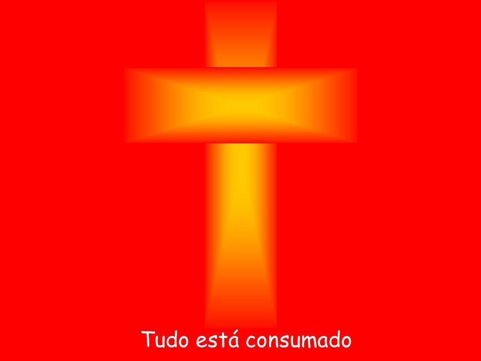 Prof. Salatiel Nascimento Ribeiro Mestre Sala Conclusão: O Titanic e a Arca de Noé Você tem muito valor. O amor que Deus tem por você pode ser medido?