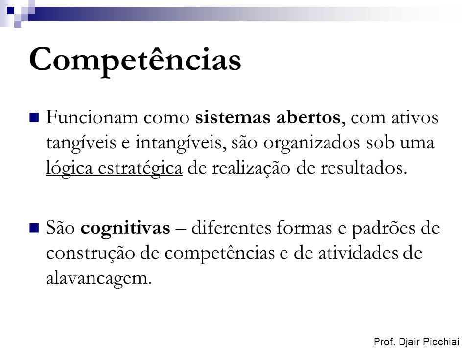Prof. Djair Picchiai Competências Funcionam como sistemas abertos, com ativos tangíveis e intangíveis, são organizados sob uma lógica estratégica de r