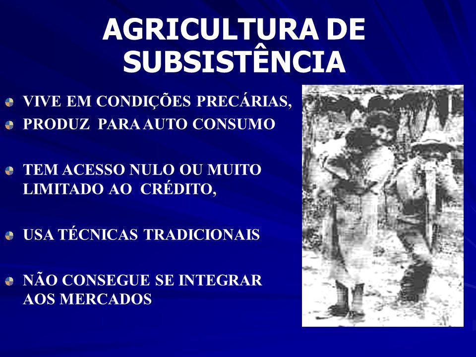 AGRICULTURA EMPRESARIAL PRODUÇÃO APENAS PARA MERCADO ALTA TECNOLOGIA POLÍTICAS DE CRÉDITO ESPECÍFICAS