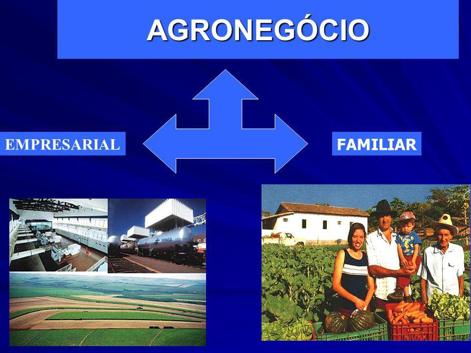 AGRICULTURA FAMILIAR ou AGRONEGÓCIO FAMILIAR PRODUZ PARA CONSUMO E MERCADO TECNOLOGIA POLÍTICAS ESPECÍFICAS DE CRÉDITO INSTITUCIONAL