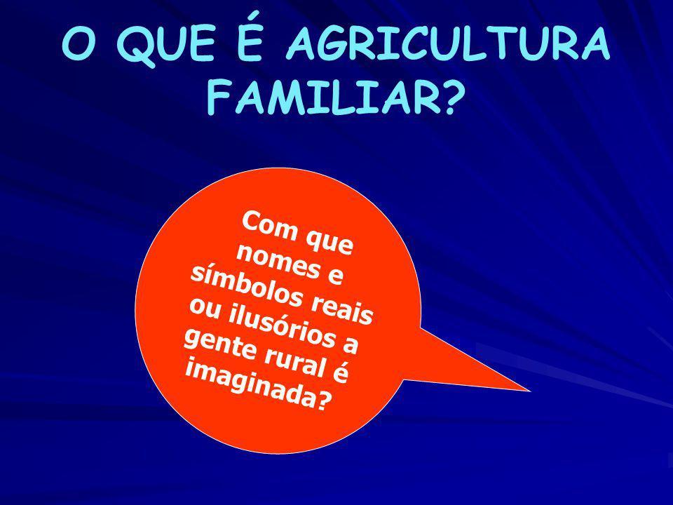 AGRONEGÓCIO EMPRESARIAL FAMILIAR