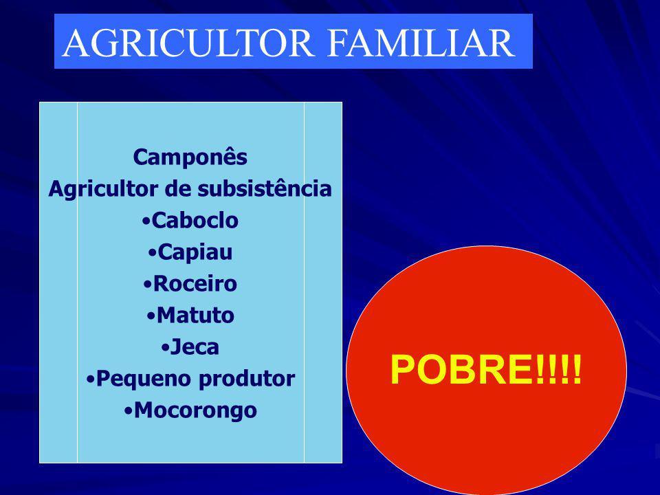 O QUE É AGRICULTURA FAMILIAR? Com que nomes e símbolos reais ou ilusórios a gente rural é imaginada?