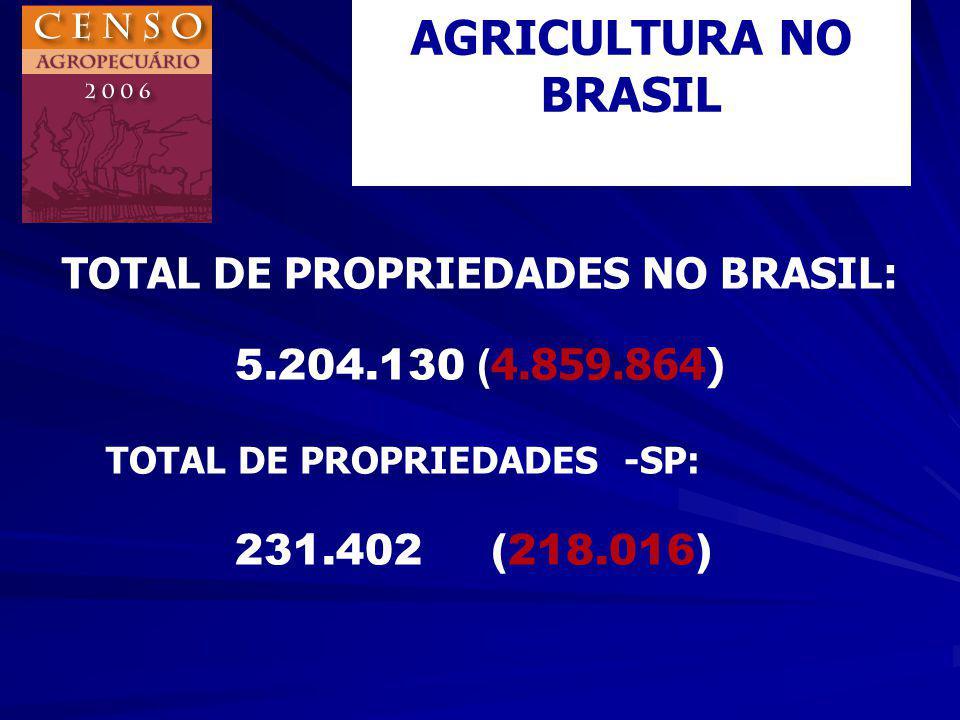 TOTAL DE PROPRIEDADES FAMILIARES(1996): 150.200 – 68,9 % AGRICULTURA FAMILIAR NO ESTADO DE SÃO PAULO CENSO 96