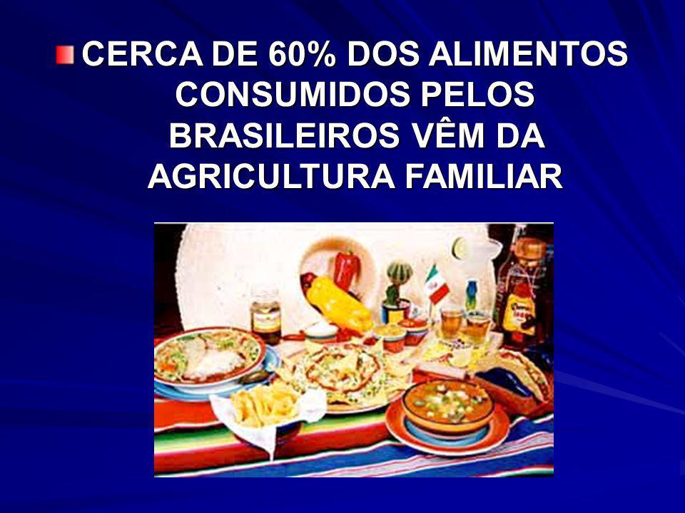 TOTAL DE PROPRIEDADES NO BRASIL: 5.204.130 ( 4.859.864) TOTAL DE PROPRIEDADES -SP: 231.402 (218.016) AGRICULTURA NO BRASIL