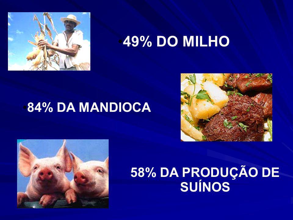 CERCA DE 70% DO FEIJÃO 54% DA BOVINOCULTURA DE LEITE 40% DE AVES E OVOS