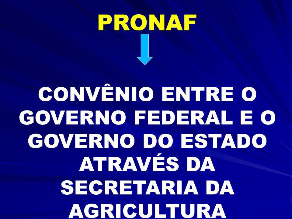 BRASIL: CONSOLIDAÇÃO DE GOVERNO MAIS DEMOCRÁTICO E POPULAR 1995/96 – PRONAF (INCLUINDO CAPACITAÇÃO) Caminho para a participação e o controle social so