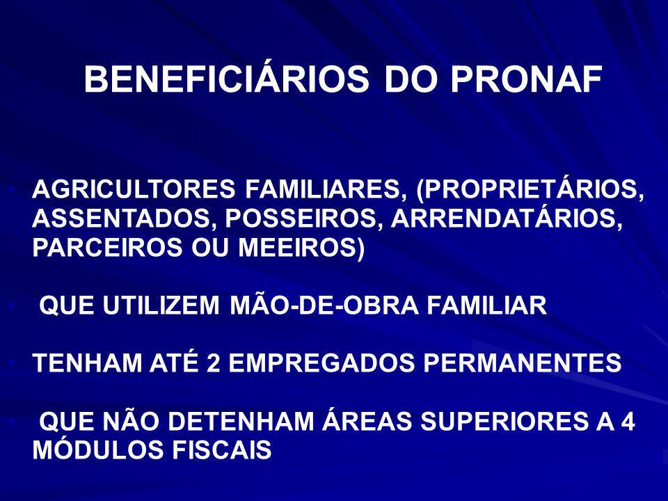 TER CONDIÇÕES DE PERMANECER NA TERRA PARA VIVER DECENTEMENTE CIDADANIA e não para continuar pobre, reproduzindo a miséria!!!