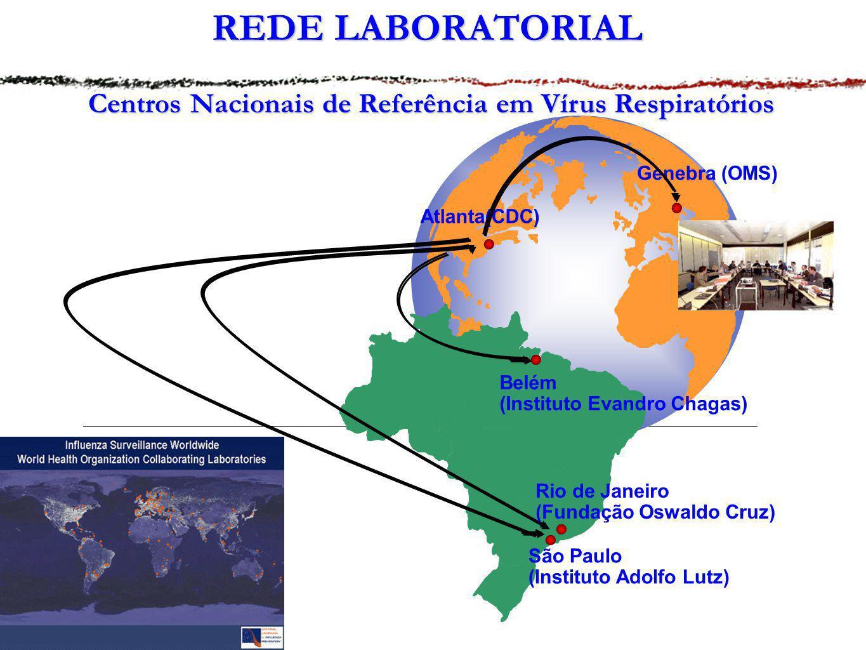 REDE LABORATORIAL Centros Nacionais de Referência em Vírus Respiratórios Atlanta(CDC) Genebra (OMS) Belém (Instituto Evandro Chagas) Rio de Janeiro (F