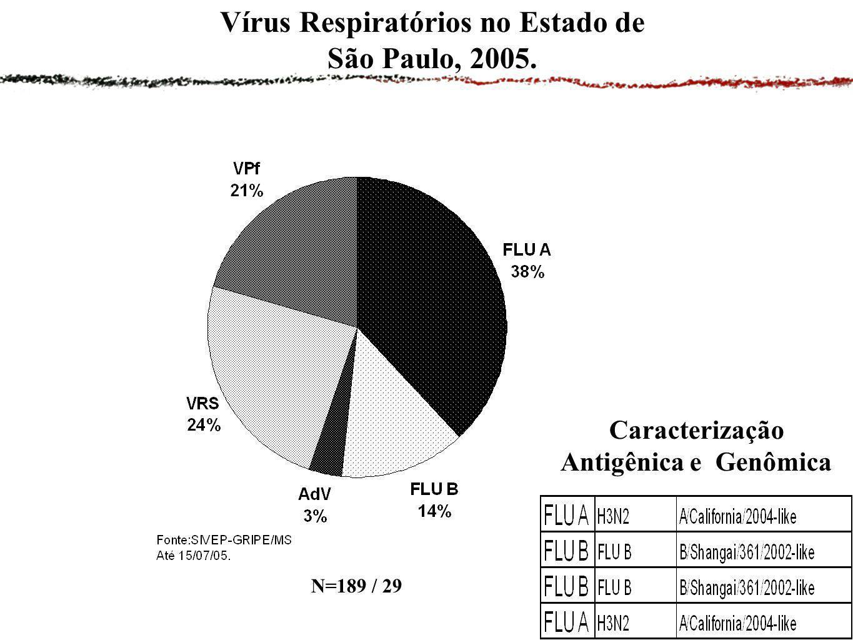 Vírus Respiratórios no Estado de São Paulo, 2005. N=189 / 29 Caracterização Antigênica e Genômica