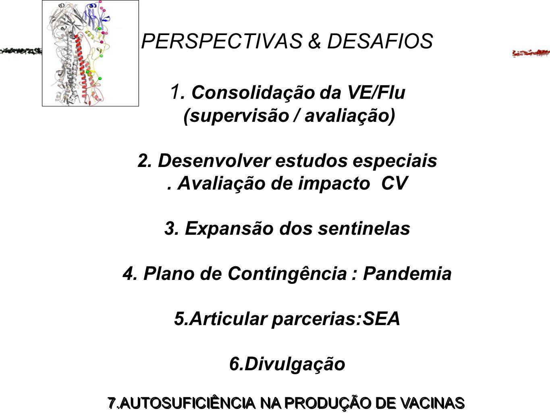 PERSPECTIVAS & DESAFIOS 1. Consolidação da VE/Flu (supervisão / avaliação) 2. Desenvolver estudos especiais. Avaliação de impacto CV 3. Expansão dos s