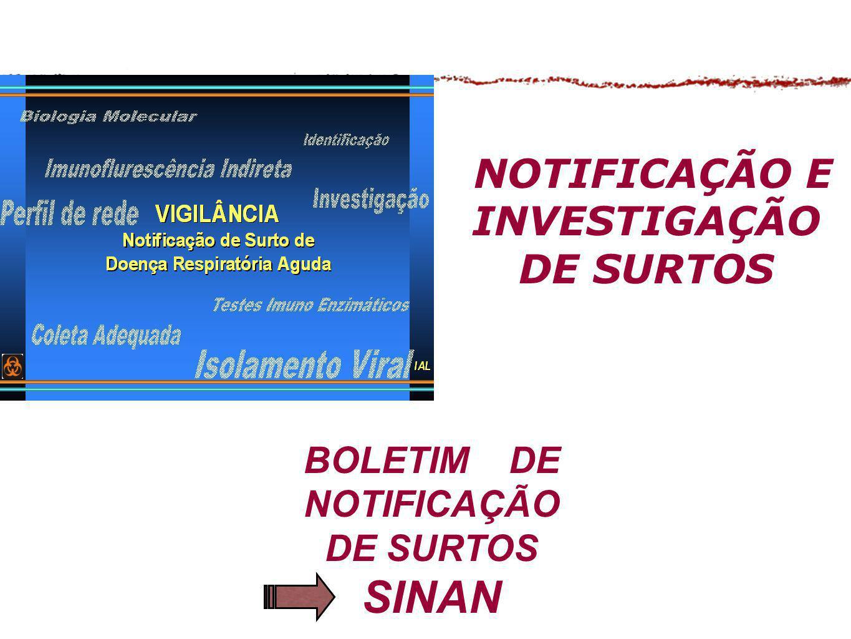 BOLETIM DE NOTIFICAÇÃO DE SURTOS SINAN NOTIFICAÇÃO E INVESTIGAÇÃO DE SURTOS