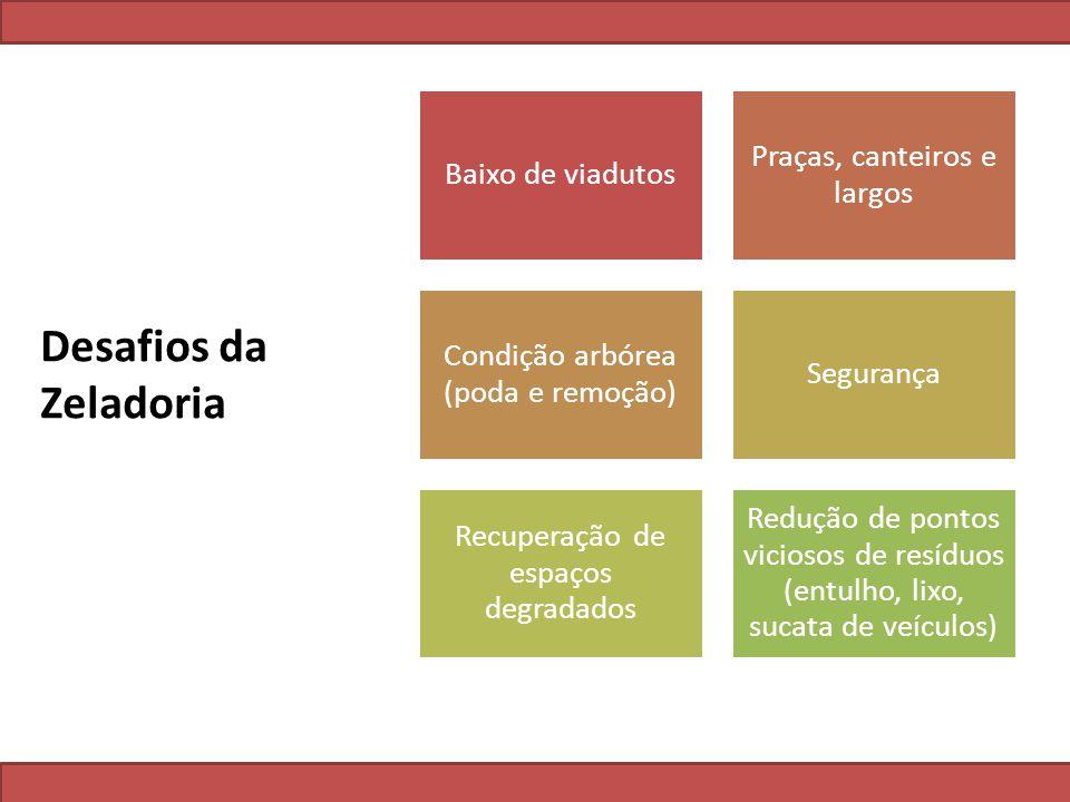 Desafios da Zeladoria Baixo de viadutos Praças, canteiros e largos Condição arbórea (poda e remoção) Segurança Recuperação de espaços degradados Reduç