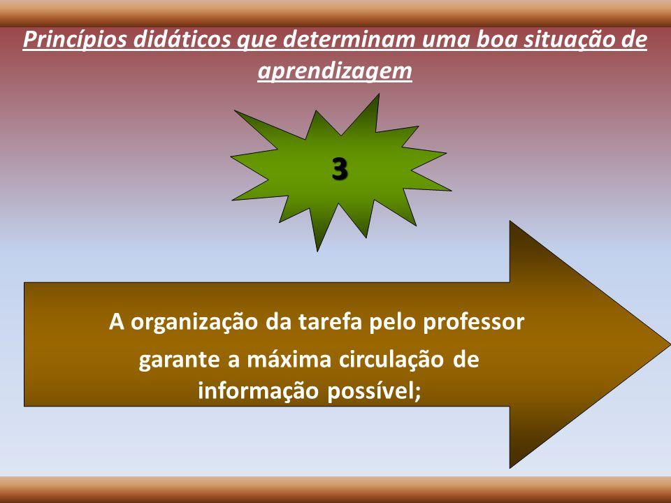 Princípios didáticos que determinam uma boa situação de aprendizagem A organização da tarefa pelo professor garante a máxima circulação de informação
