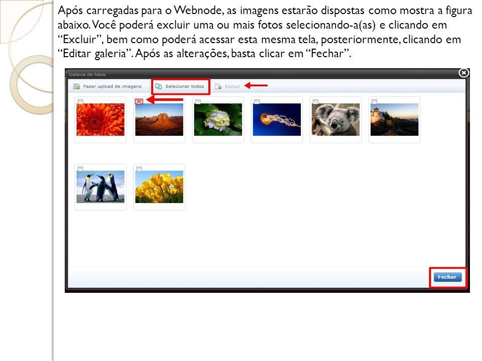 Após carregadas para o Webnode, as imagens estarão dispostas como mostra a figura abaixo. Você poderá excluir uma ou mais fotos selecionando-a(as) e c