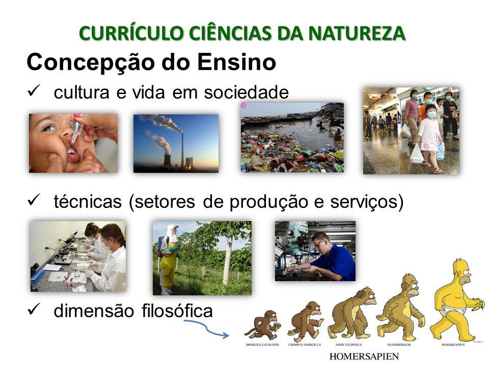 Concepção do Ensino cultura e vida em sociedade técnicas (setores de produção e serviços) dimensão filosófica CURRÍCULO CIÊNCIAS DA NATUREZA
