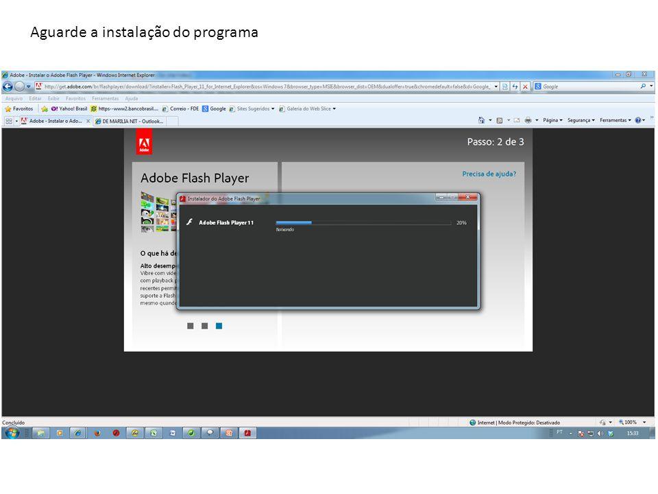 O programa solicitará que você feche todas as janelas do internet explorer.