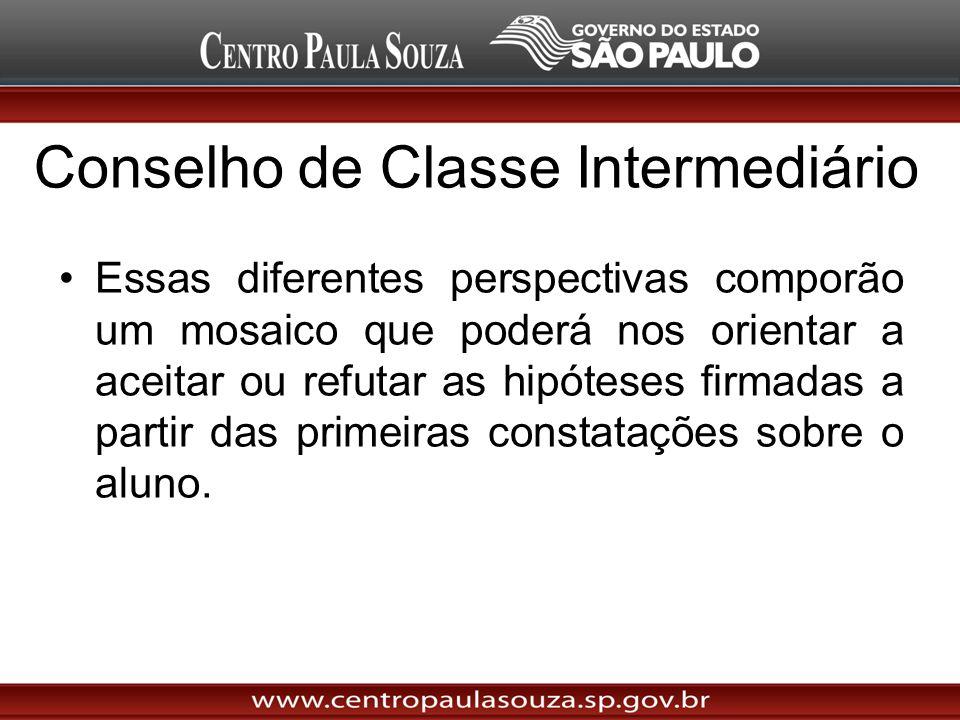 Conselho de Classe Intermediário Essas diferentes perspectivas comporão um mosaico que poderá nos orientar a aceitar ou refutar as hipóteses firmadas