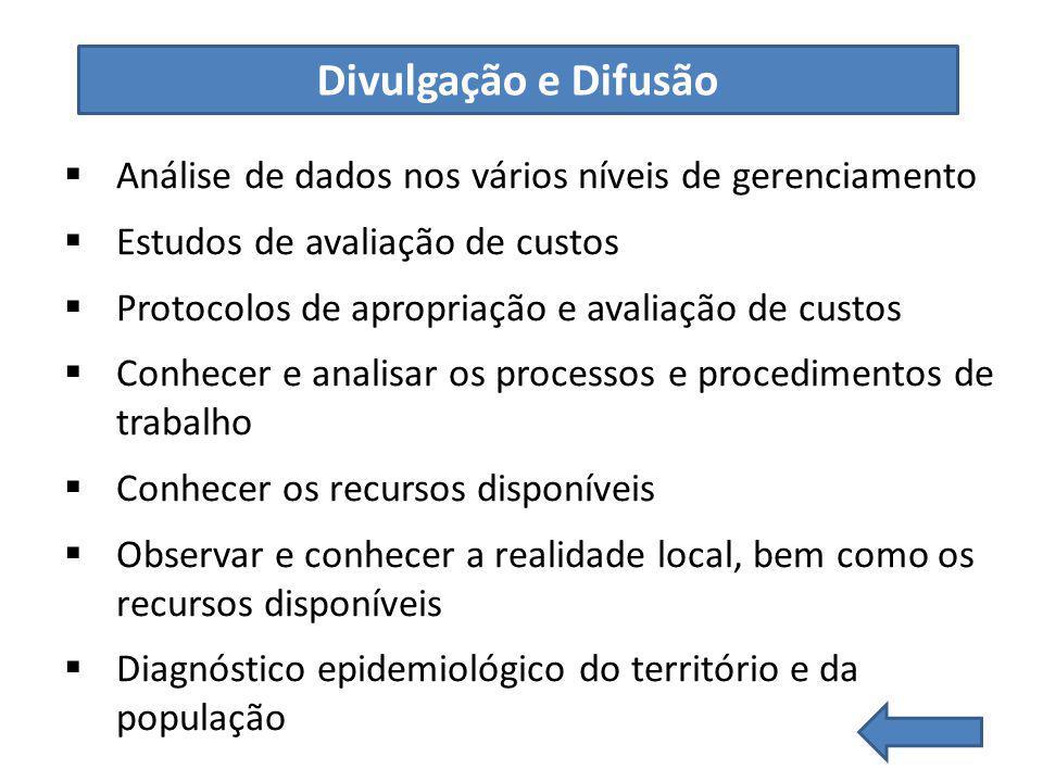 Análise de dados nos vários níveis de gerenciamento Estudos de avaliação de custos Protocolos de apropriação e avaliação de custos Conhecer e analisar