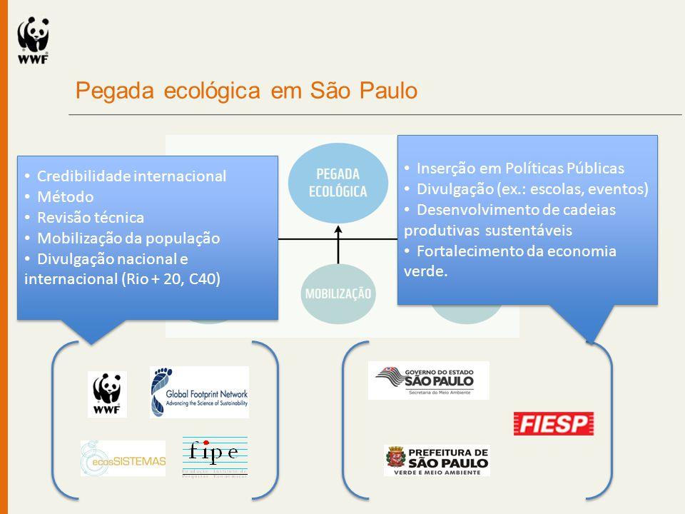 Pegada ecológica em São Paulo Credibilidade internacional Método Revisão técnica Mobilização da população Divulgação nacional e internacional (Rio + 2